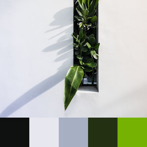 Color Palettes | Clean & Modern 10 101 Brilliant Color Combos
