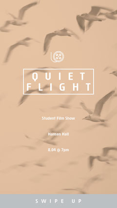 Beige Student Film Show Instagram Story with Birds Art Show