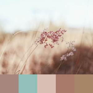 Color Palettes | Earthy 4 101 Brilliant Color Combos