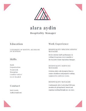 Modern Manager Resume CV