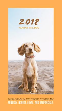 Orange Chinese Year of the Dog Infographic Instagram Story Dog