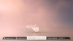 Swaney Twitch Overlay  Animal