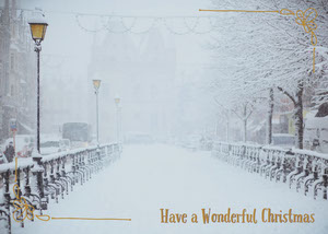 Light Toned, Winter Christmas Card  Christmas Greetings