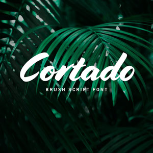 Green Palm Leaf Brush Font Logo Brand Square Graphic 32 geniales estilos de caligrafía y fuentes