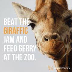 Light Toned Giraffe Joke Instagram Post Jokes