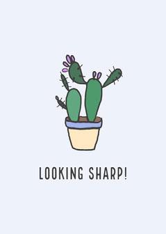 Looking Sharp! Cactus