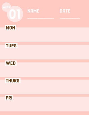 Pink Weekly Lesson Plan Horario de clase