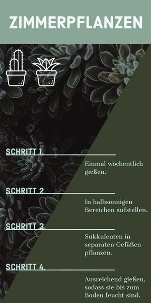 ZIMMERPFLANZEN Infografiken