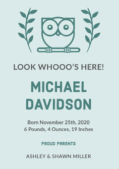 Green Illustrated Birth Announcement Card with Owl Boys