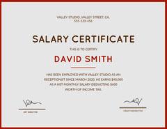 valley studio salary certificate  Tax Flyer