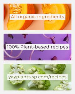 plant based recipes Instagram portrait  Plants