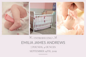 Light Toned Child Birth Announcement Facebook Banner Birth Announcement