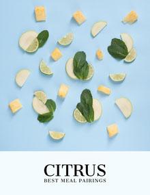 Blue Citrus Fruit Magazine Cover Magazine Cover