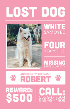 White and Pink, Lost Dog, Poster Missing Posters