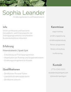 Sophia Leander Professioneller Lebenslauf