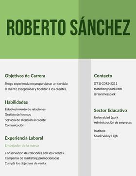 Roberto Sánchez Currículum vitae