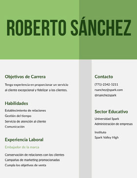Roberto Sánchez Currículum profesional