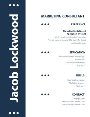 Blue and White Marketing Consultant Resume Resume  Examples