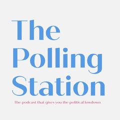 Blue & Pink Minimal Voting Podcast Artwork Political Flyer