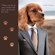 Business and Employment Instagram Square Meme with Dog in Suit Meme