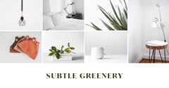 Green and White Houseplant Facebook Post Graphic with Collage Interior Design