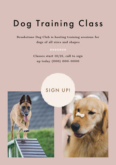 Dog Training Class Dog Flyer