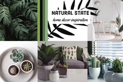 Houseplant Home Decor Inspiration Mood Board Cactus