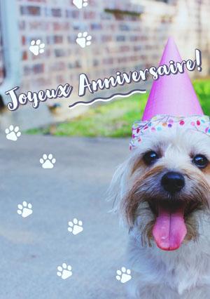 dog birthday cards  Carte d'anniversaire