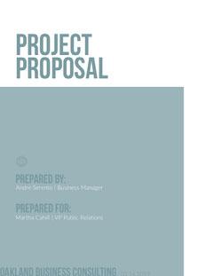Pale Blue Project Business Proposal  Blue