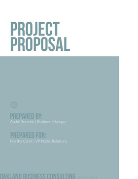 Pale Blue Project Business Proposal  Forslag