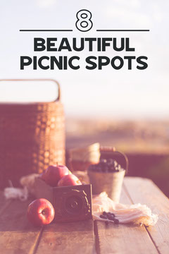 Evening Picnic Image Pinterest Post Picnic Flyer