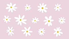 Pink and White Daisies Zoom Background Flowers