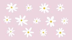 Springtime Daisies Zoom Virtual Background Background