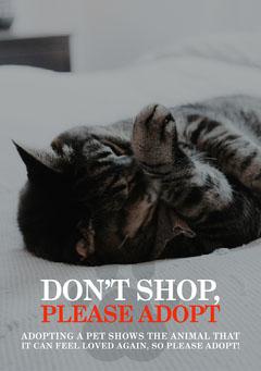 Don't Shop Please Adopt Flyer Cat