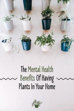 Houseplant Mental Health Pinterest Graphic Health Poster