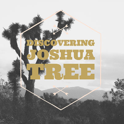 Discovering Joshua Tree