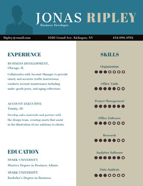 Blue and Beige Business Developer Resume Creative Resume