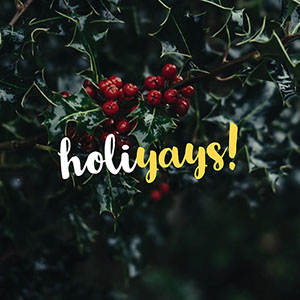 Green and Red Dark Toned Holiday Instagram Graphic Meme