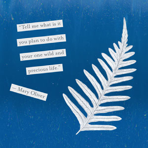 Blue Plant Sunprint With Text Quote Collage Remove Background