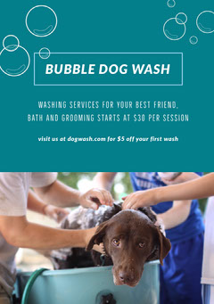 BUBBLE DOG WASH Dog Flyer