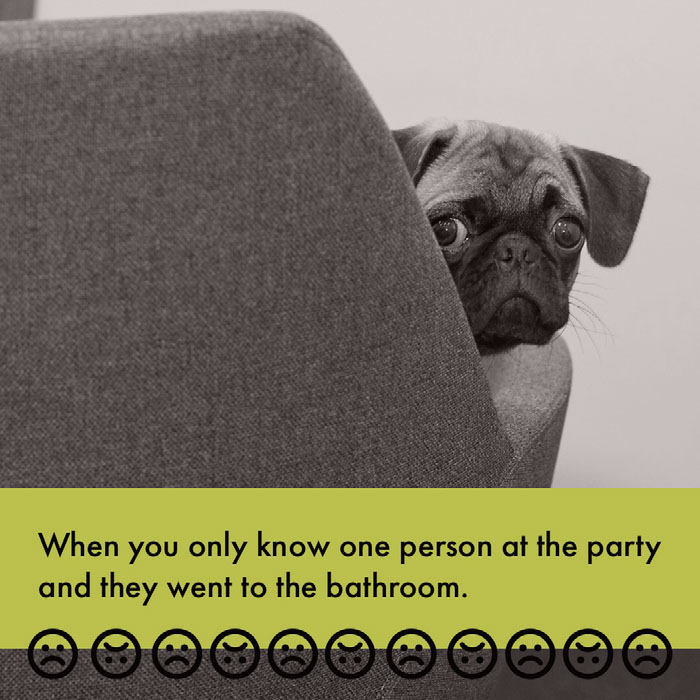 When you only know one person at the party <BR>and they went to the bathroom. Dog Memes