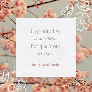 La gratitud es <BR>la más bella <BR>flor que brota <BR>del alma.  Pósteres de cita