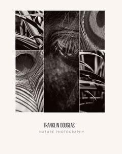 FRANKLIN DOUGLAS Nature