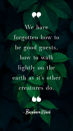 Green and White Barbara Ward Quote Instagram Story Nature