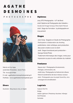 Blue Stripe Minimal Photographer Resume  CV professionnel