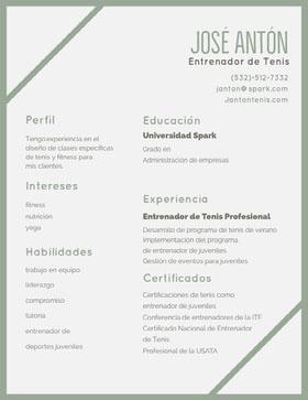 José Antón Currículum profesional