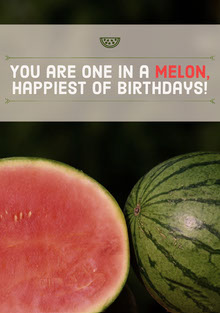 You are one in a melon, happiest of birthdays! Geburtstagskarte