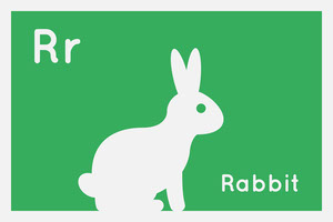 Green and White Flashcard Animal Rabbit Card Cartão educativo