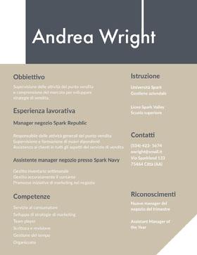 Andrea Wright   Curriculum professionale