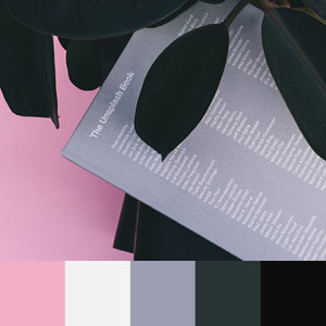 Color Palettes | Clean & Modern 3 101 Brilliant Color Combos